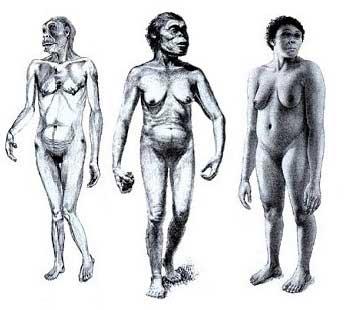 Как рисовать облик человека