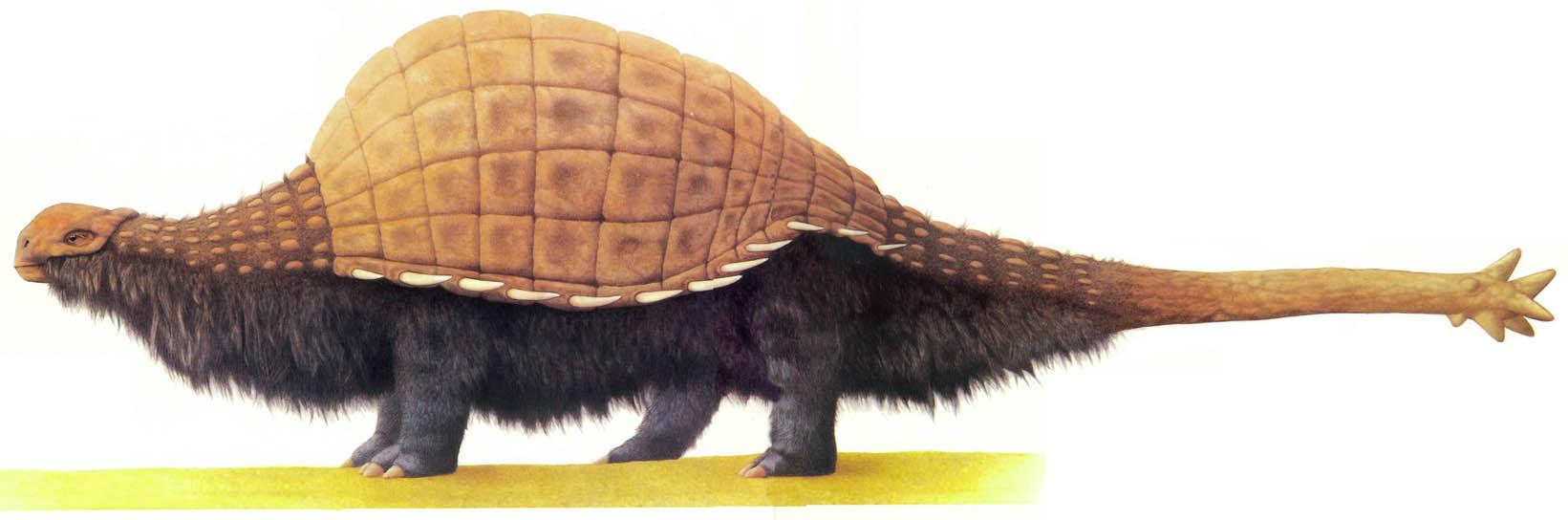 Atercurisaurus Taranter