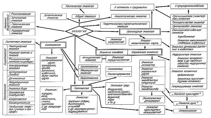 Н. Ф. Экология (теории, законы, правила принципы и гипотезы) - (1) .