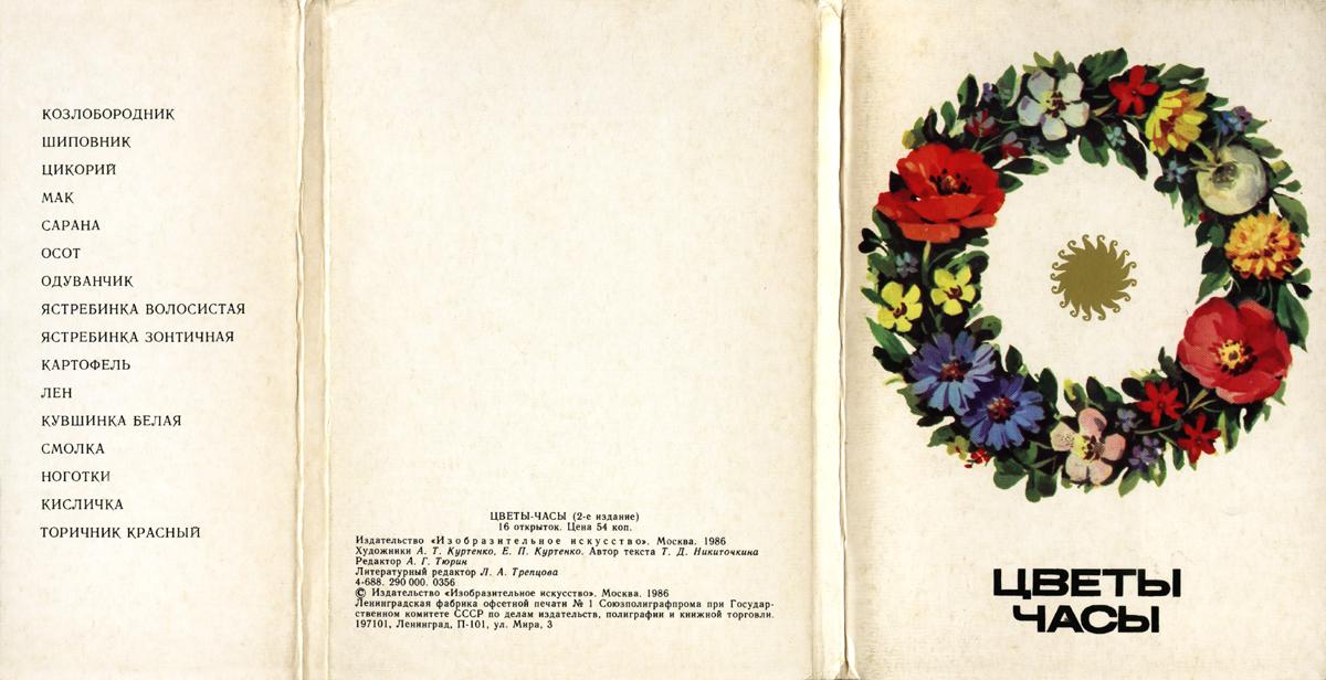 Цветы часики как называются